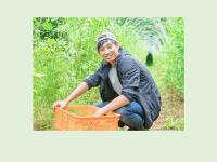 49歳以下の新規就農者、4年連続で2万人超える