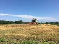 【第2回】農業に向くのはどの法人形態?その特徴を探る