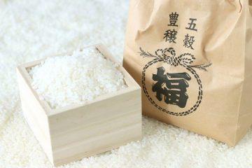 【ふるさと納税】もう食べた?北海道のブランド米『ななつぼし』