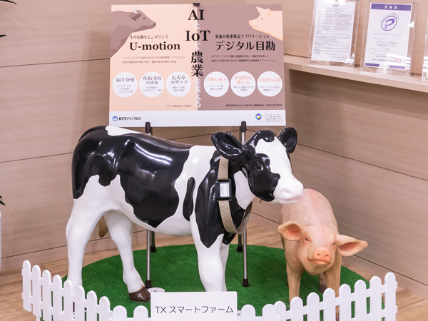 """パートナー企業とともに""""AIファースト""""で酪農・畜産・養豚業界を支援する「NTTテクノクロス」"""