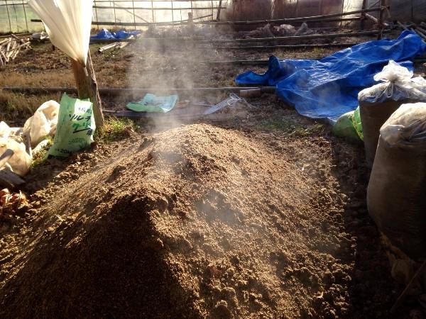 土作りの基本を解説!  良い土の条件から有機肥料の知識まで