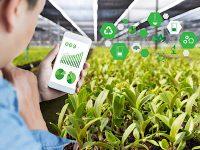 スマート農業とは?  ICTを活用した農業のメリットと導入へ向けた課題