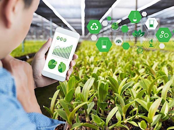 そもそもスマート農業とは? ICTを活用した農業のメリットと導入へ向けた課題