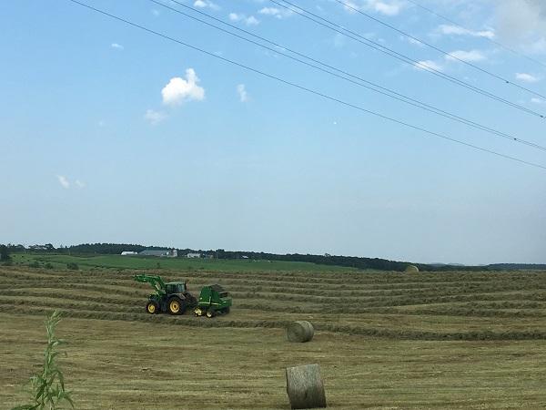【第3回】農業法人を設立しよう! 設立手続きの流れ