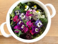ぺんぺん草やハーブがバラの隣に?! お花屋さんに並ぶ雑草や野菜類