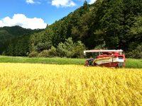 """""""コスト100円の米づくり""""を実現に近づける農機シェアリース®。大規模農家にとってのメリットはもちろん、中山間地域の農家参画など取引規模拡大中!"""