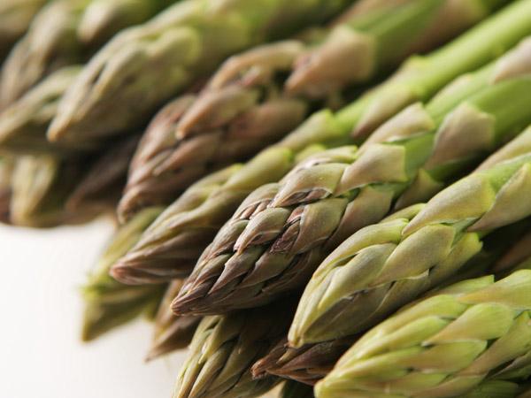 アスパラガスの育て方は? おいしく育つ栽培方法とポイント