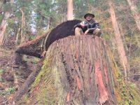 """ヒップホップから林業へUターンの37歳 """"自伐型""""で山を守る【林業を知ろう】"""