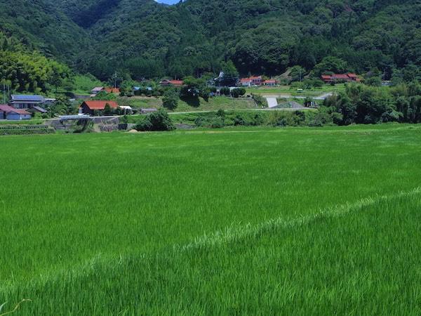 島根県が支援する新しい農業のカタチ「半農半X」