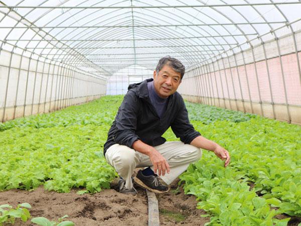 濃厚野菜「エビベジ」 有名シェフを魅了する高級ブランドの育て方