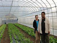 都市型農業の今。時代と自分に合うスタイルを探して