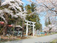 """【福島県飯舘村】自然と人情味に溢れた「いいたて村」で""""までいな暮らし""""を楽しみませんか"""