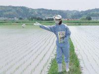知っておきたい農薬の基礎知識 ~種類や作用の違いなど~