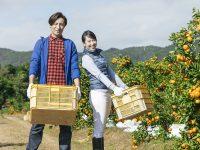 農業次世代人材投資資金の素朴なギモン 夫婦でもらう場合や確定申告の方法とは?
