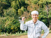 農業経営での節税を学ぼう マイナビ農業ノウラボが12月に無料セミナー