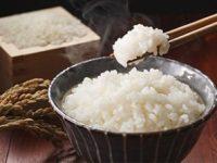 【ふるさと納税】鳥取県のブランド米『きぬむすめ』はTKGで食べてみて!