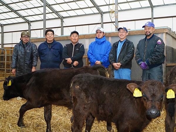 ブランド牛の子牛を育て、GPSで畑耕す。北海道安平町「中道農場」スタッフ募集