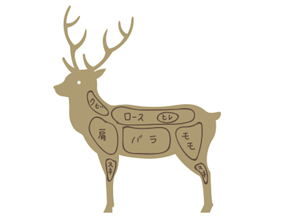 狩猟で獲った獲物をジビエ肉にする工程は? 解体の手順を解説