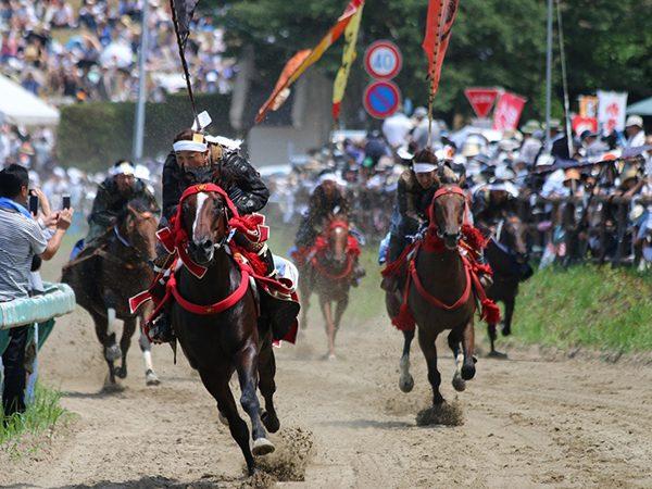 【福島県南相馬市】「農業復興チャレンジ塾」など再興への歩みも活発な、伝統神事・野馬追の里