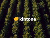 人材不足と収量アップを情報共有でサポート。サイボウズの『kintone(キントーン)』で、自分たちの農業を快適に。
