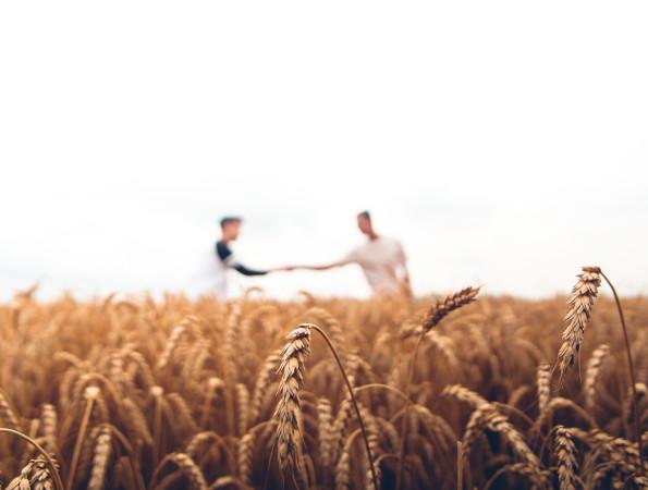 「担い手農業者」の6割以上「後継者候補あり」 日本政策金融公庫が調査