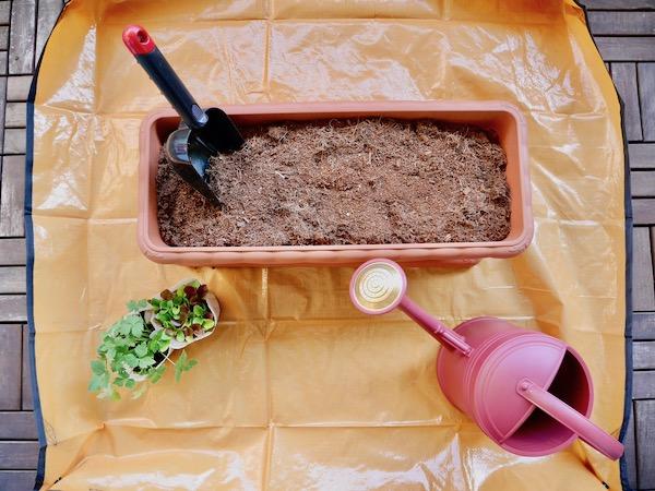 大掃除で痛感。これぞベランダ菜園の必需品!【枯れ専かーちゃんのベランダ菜園】