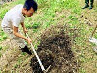 耕さない畑づくりのメリット【畑は小さな大自然vol.21】