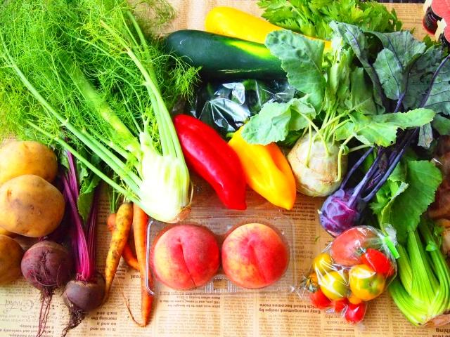 無料で野菜がもらえる?最適なコスパで野菜を買える通販サイトまとめ