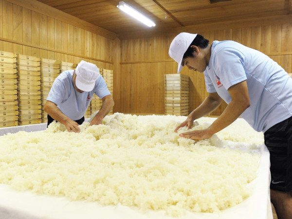 酒造りは米作りと人づくりから【きき酒師の漫才師が泉橋酒造にツッコミ!Vol.3】