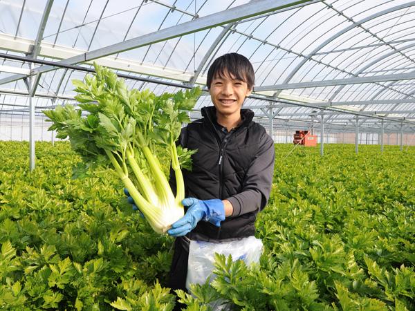 """「苦土」って何? 土も野菜も元気にする""""農業の素""""です!"""