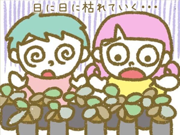 漫画「宮崎に移住した農家の嫁日記」【第43話】3シーズン目の裏側