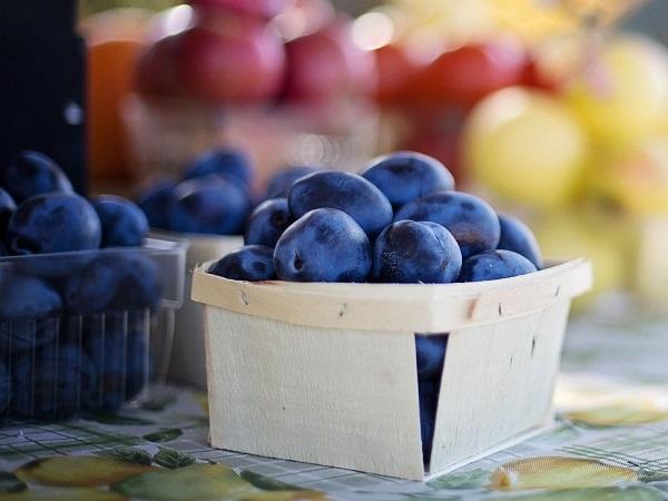 【農業マーケティングの現場からVol.6】農業マーケティングツール「チョクバイ!」の有効性