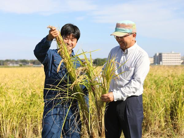 幻の酒米『強力(ごうりき)』を無農薬で――鳥取大学・創立70周年の記念酒づくりを三菱農業機械がサポート