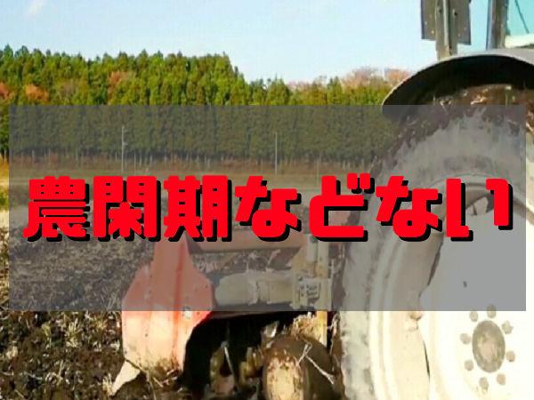 農繁期にできない作業