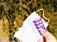 スギ花粉症を起こした林業 2つのスギ林対策とは?【林業を知ろう】