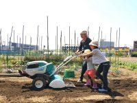 ライフスタイルにあわせた市民農園のいろいろな選び方【進化する都市農業 #3】