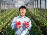 土壌の微生物叢(そう)を改善するのは「ビール酵母」!? 環境保全型の新しい液肥に注目!