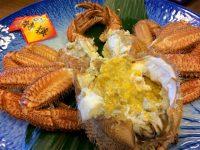 【ふるさと納税】北海道!美味しい「毛ガニ」おすすめ返礼品9選
