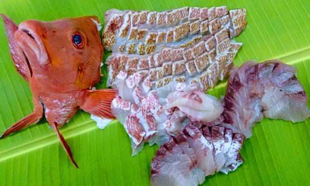 【ふるさと納税】美味しい「鯛」おすすめ自治体5選