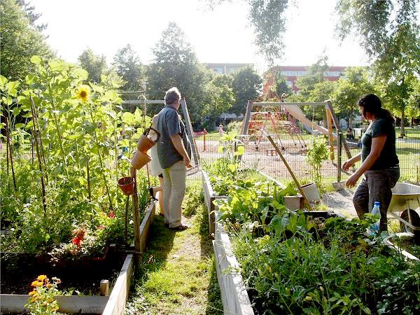 進化する都市農業