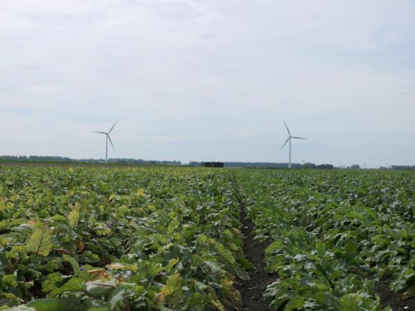 出張!オランダ農場 〜日本とは違う有機農業の考え方〜