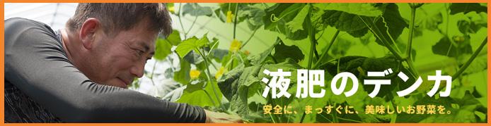 土壌改良と植物活性――二度効く腐植酸|マイナビ農業