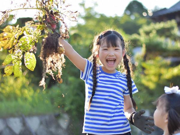親子で体験できる! 都心から1時間でいける野菜の観光農園10選