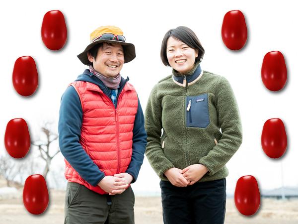 おいしいトマトを省力化&低コストで作るには、品種選定と栽培方法に秘策があった!