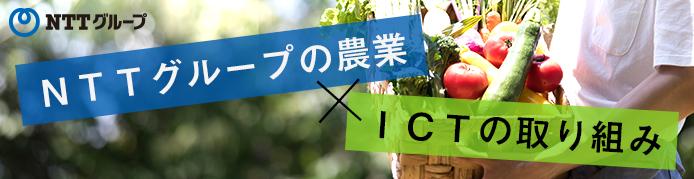 NTTグループの農業×ICTの取り組み|マイナビ農業