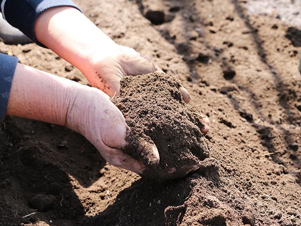 土壌改良で作物をうまく育てる方法とは? 土壌改良材を用途別に紹介!