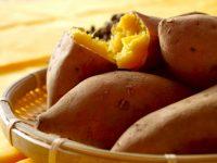 【ふるさと納税】加工品や焼酎もご紹介!さつまいもおすすめ10選!ほくほくの焼き芋を満喫