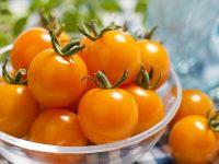 タキイ種苗がおすすめ!直売所で映える野菜4選