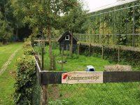出張!オランダ農場 〜農福連携先進国に学ぶケアファーム〜