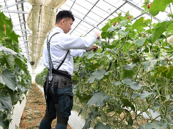 農作業の腰痛リスクを考える。動力のないアシストスーツの使用感を調査